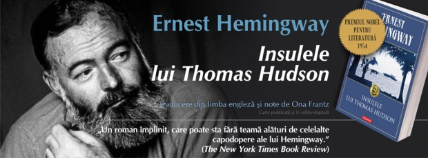 facebook_hemingway_insulele